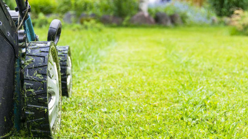 Lawn Care Circleville, OH Chillicothe, OH